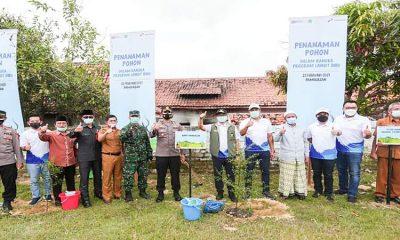 Pertamina Serahkan 6 Ratus Bibit Pohon pada Pemkab Pamekasan